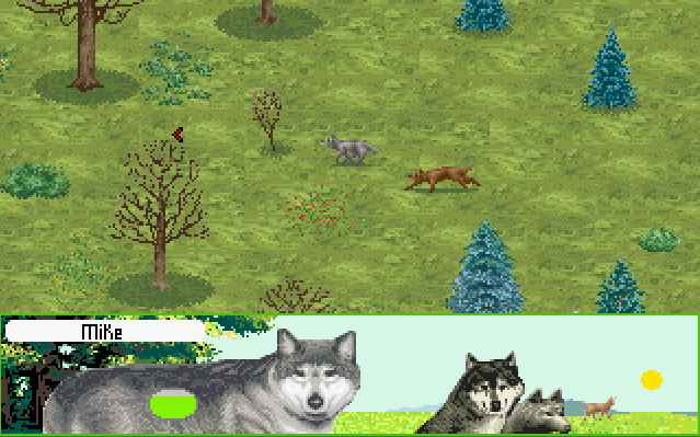 Wolf Game