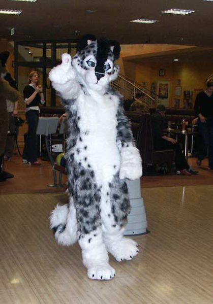 File:Fursuit TaniDaReal top.jpg
