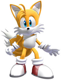 "Miles ""Tails"" Prower en Shadow The Hegdehog."
