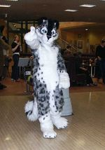 Una fursuiter